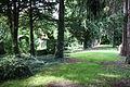 Brühl (Rheinland) Jüdischer Friedhof 157.JPG