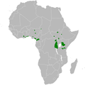 Bradypterus centralis distribution map.png