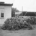 Brandhout, uitkijktoren, Bestanddeelnr 900-4876.jpg