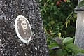 Briceni Jewish Cemetery 78.JPG