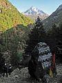 Bridge in Nepal IMG 1500a.jpg