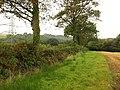 Bridleway along field edge south of Bulkworthy - geograph.org.uk - 981550.jpg
