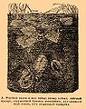 Brockhaus and Efron Encyclopedic Dictionary b12 821-1.jpg