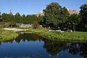 Brooklyn Botanic Garden New York October 2016 010.jpg