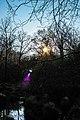 Buio e luce.jpg