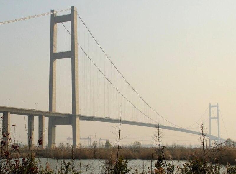 File:Bushes in Runyang Bridge Park.JPG