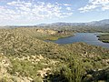 Butcher Jones Trail - Mt. Pinter Loop Trail, Saguaro Lake - panoramio (112).jpg