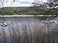 Butterstone Loch - geograph.org.uk - 170608.jpg
