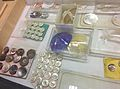 Buttons at Birmingham Museum Collection May 2015.jpg