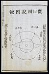 C19 Chinese eye diagnosis chart showing Yin and Yang division Wellcome L0039712.jpg