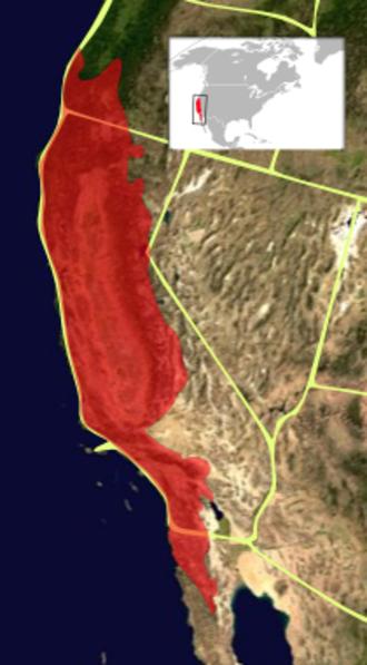 California Floristic Province - California floristic province