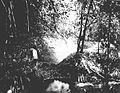 COLLECTIE TROPENMUSEUM De Wai-Toeba rivier met de dam en de bovenmond van de waterleiding cultuuronderneming Kedongdong of Way Lima de Lampongse Districten Zuid-Sumatra. TMnr 60013384.jpg