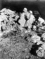 COLLECTIE TROPENMUSEUM Oude graven bij Randonan in Toraja Celebes TMnr 10003187.jpg