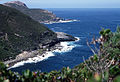 CSIRO ScienceImage 2962 Coast near Albany Western Australia.jpg