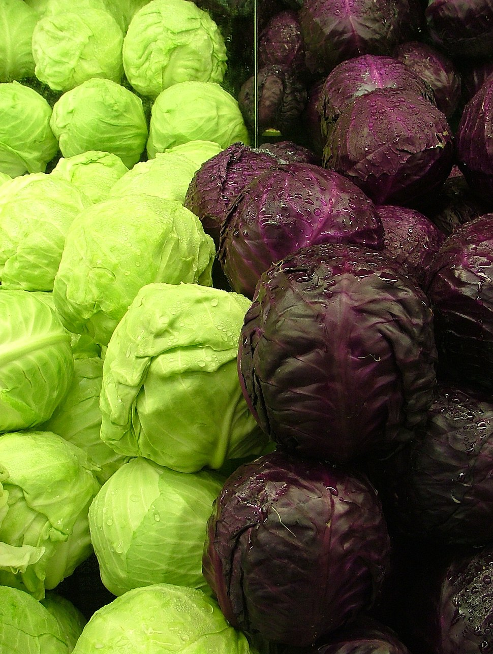 Cabbages Green and Purple 2120px