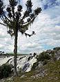Cachoeira do Passo do S - Parque Estadual do Tainhas 01.jpg