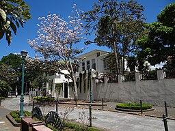 Calle 11 San José CR