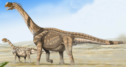 Camarasaurus cropped and shopped.png