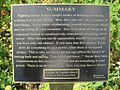 Cancer Survivors Park Memphis TN 22 Road to Recovery plaque 7.jpg