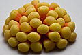 Candy corn flower (2995098469).jpg