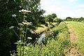 Car Dyke - geograph.org.uk - 837452.jpg