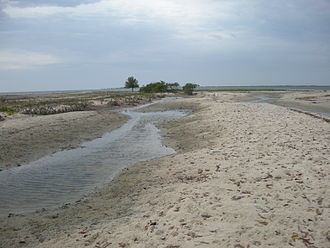 Carabane - Saltwater streams cut across the shoal.