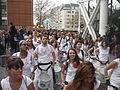 Carnaval des Femmes 2014 - P1260336.JPG