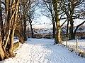 Carr Lane , Dewsbury Moor - geograph.org.uk - 1709929.jpg