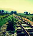 Carrilera del tren de carga a su paso por la ciudad de Sogamoso.jpg