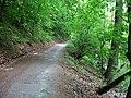 Cesta podél Svitavy.jpg