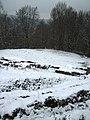 Cetatea dacica Blidaru WP 20151129 13 58 42 Pro highres.jpg