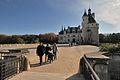 Château de Chenonceau 9713.jpg