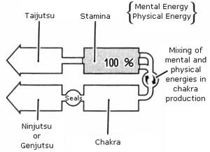 Jutsu (Naruto) - Simplified diagram of chakra generation mechanics