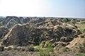 Chambal Ravines - Rajasthan - 2013-02-22 4604.JPG