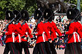 Changing the guard (14735258440).jpg