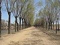 Changping, Beijing, China - panoramio (38).jpg