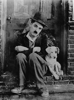 Chaplin A Dogs Life