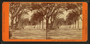Stereoscopy - View of Boston, c. 1860; an early stereoscopic card for viewing a scene from nature