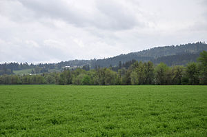 Chehalem creek basin.jpg