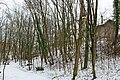 Chemin de sous bois le long de l'Aire - panoramio (7).jpg