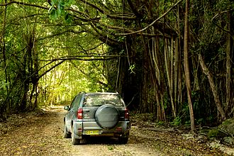 Christmas Island - Car moving across the backroads of Christmas Island
