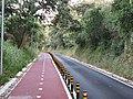 Ciclovia e pedonal na N249 01.jpg
