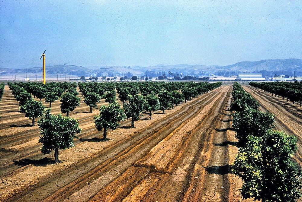 The population density of Placentia in California is 2943.1 people per square kilometer (7621.87 / sq mi)