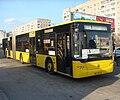 CityLAZ 20 end bus stop.JPG