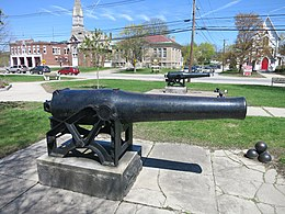 Photo shows two black naval cannons on a town common.