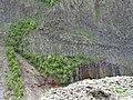 Cliff Face - Outside Okrokana - Near Kazbegi - Greater Caucasus - Georgia (18606546985) (2).jpg