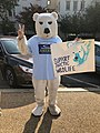 Climate activist at Capitol South Metro in 2019 dressed in Polar Bear Costume - Support Arctic Wildlife.jpg