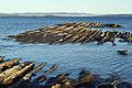 Coast (6443787211).jpg