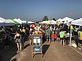 Columbia, Missouri farmers market on 9-16-17.jpg