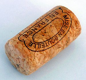 A cork stopper of a wine bottle (made from com...
